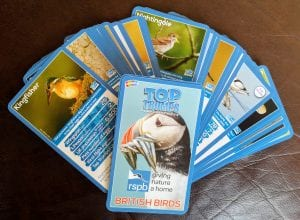 RSPB Top Trumps, stocking fillers, charity stocking fillers
