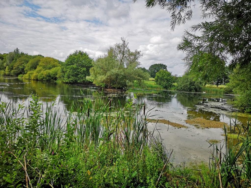 Sevenoaks Wildlife Reserve - Kent Wildlife Trust