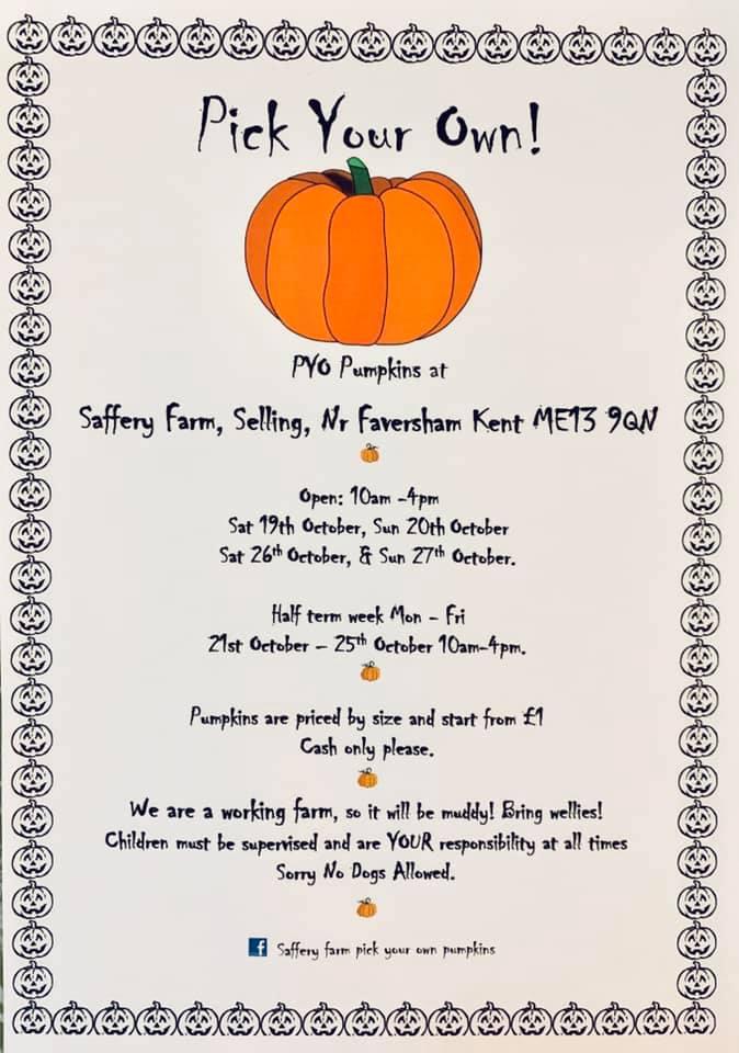 saffery farm pumpkins