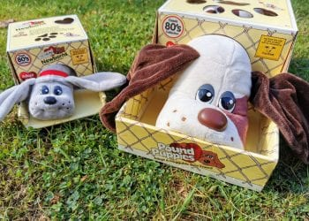 Pound Puppies Classic and Newborn plush toys, still in their carry cases on green grass. The newborn Pound Puppy is grey and the large is beige and has brown ears and patches