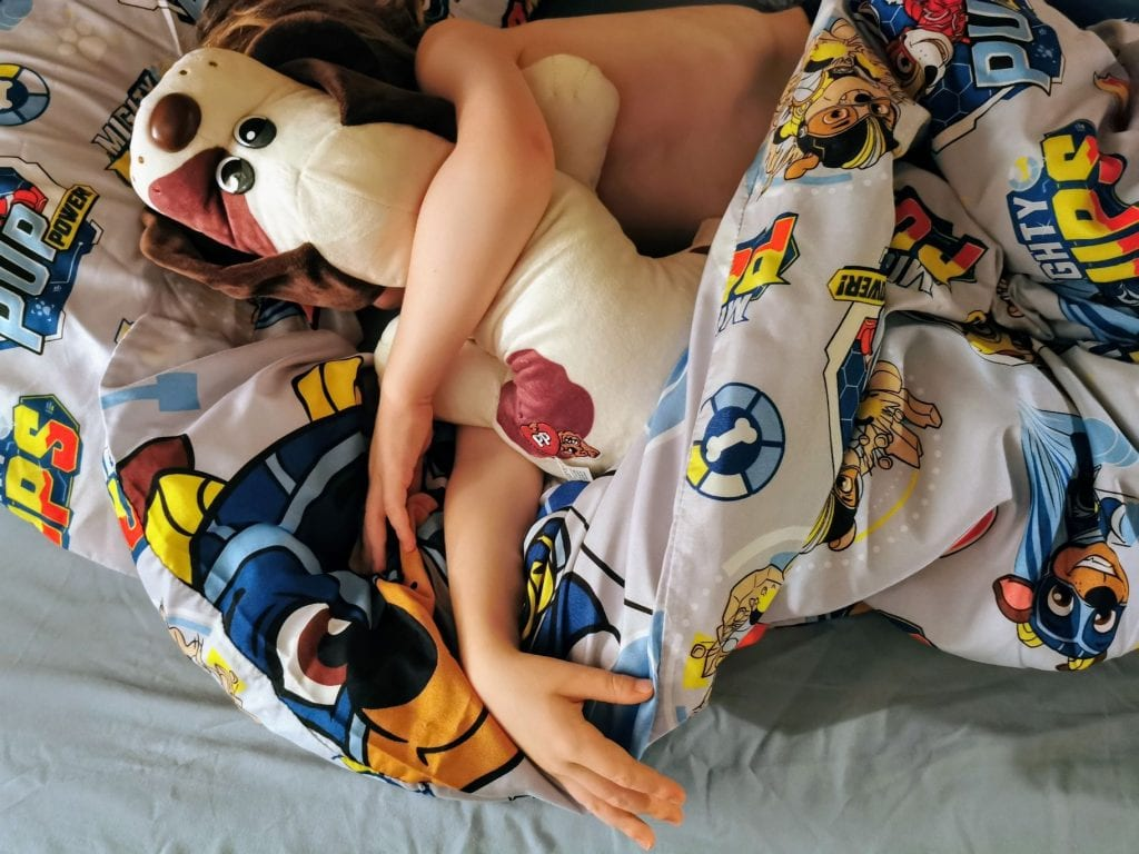 Little boy in bed asleep with his arm over a Pound Puppies classic