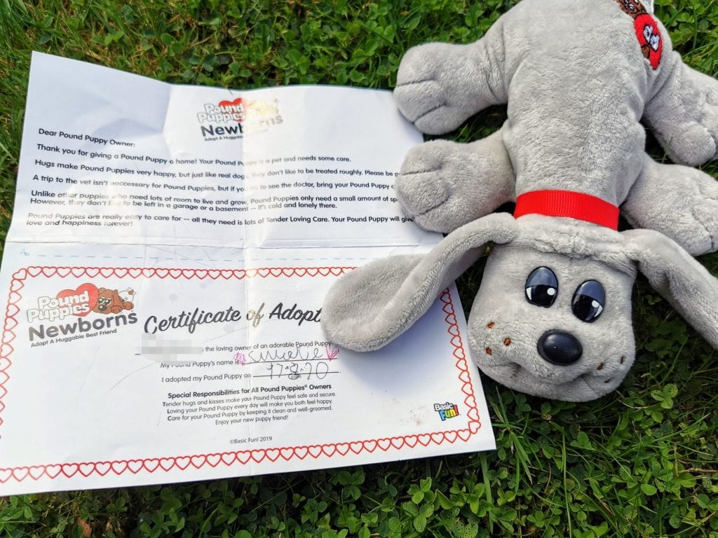 Pound Puppies Newborn plush, grey puppy with adoption certificate on grass